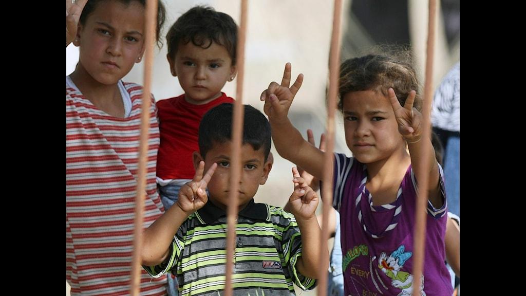 Syriska flyktingar vid gränsen till Turkiet