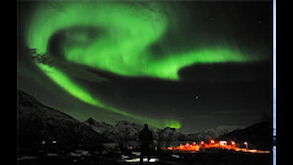 Norrsken, FOTO: RUNE STOLTZ BERTINUSSEN