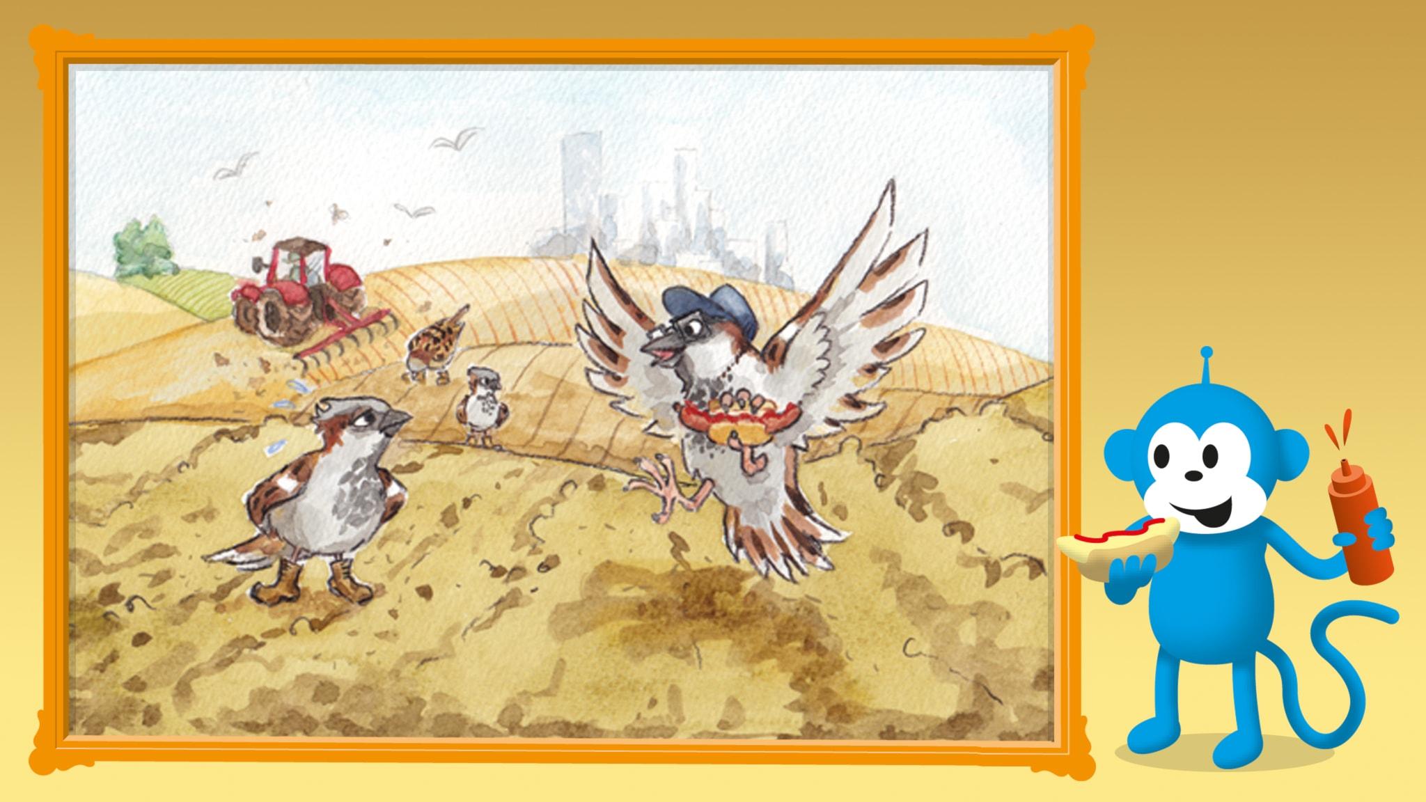 Radioapans fågelsånger: Gråsparven