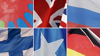 Flaggor: Finland, Romernas flagga, Storbritannien, Somalia, Ryssland, Tyskland. Foto: TT.