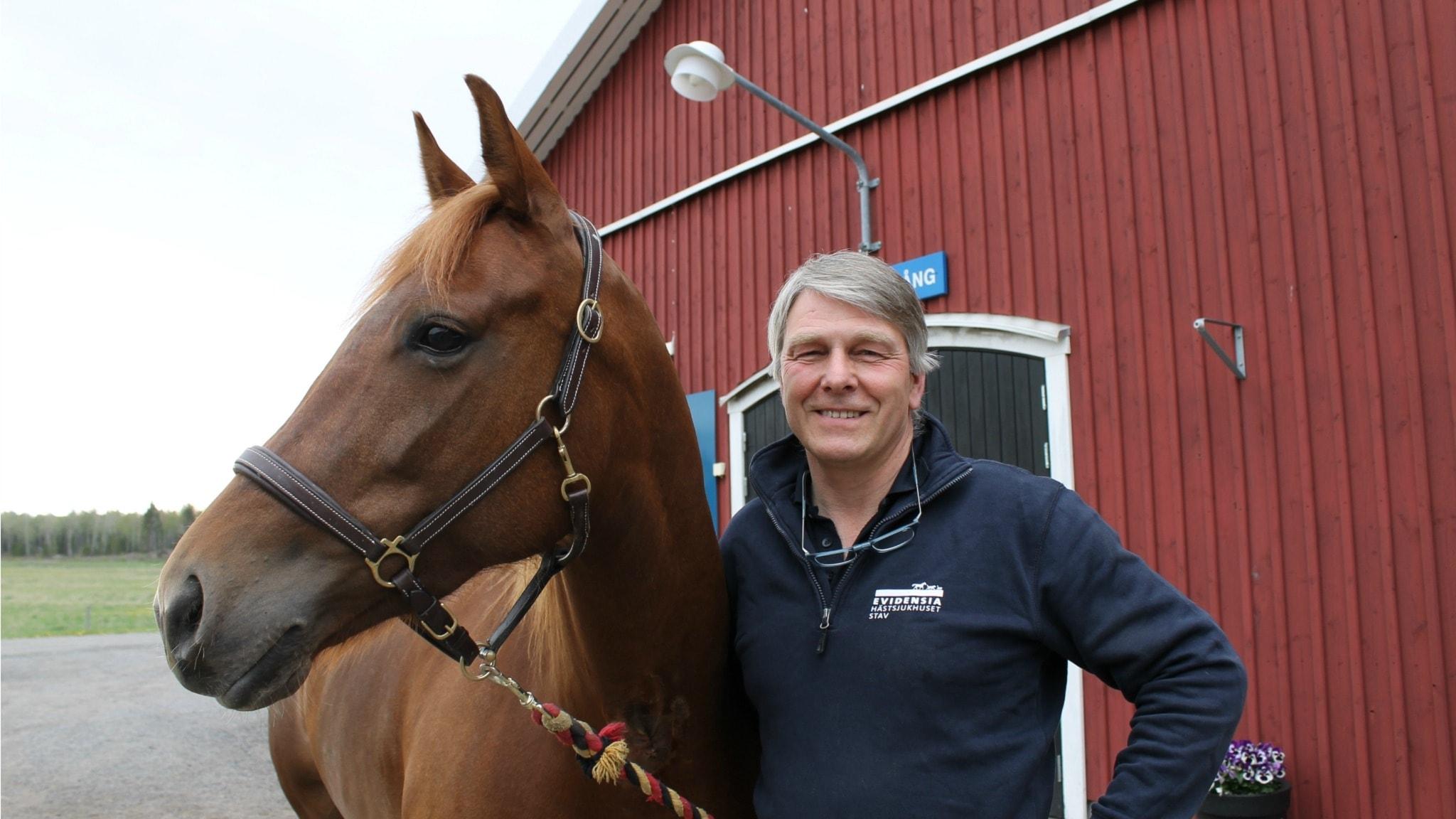 Håll hästen frisk - med veterinär Flemming Winberg