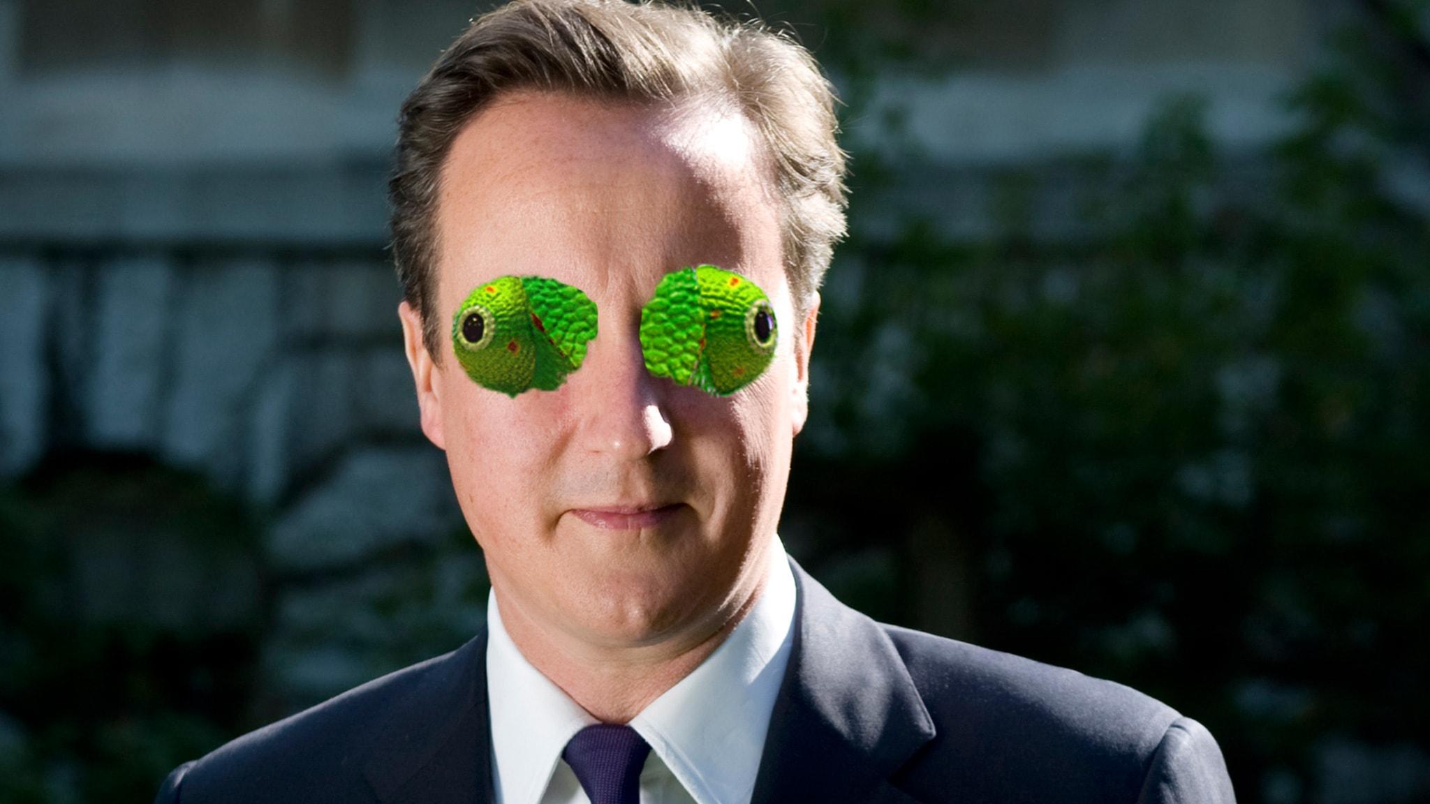 #16. David Cameron - Skattkammarkameleonten som kränkte The Smiths