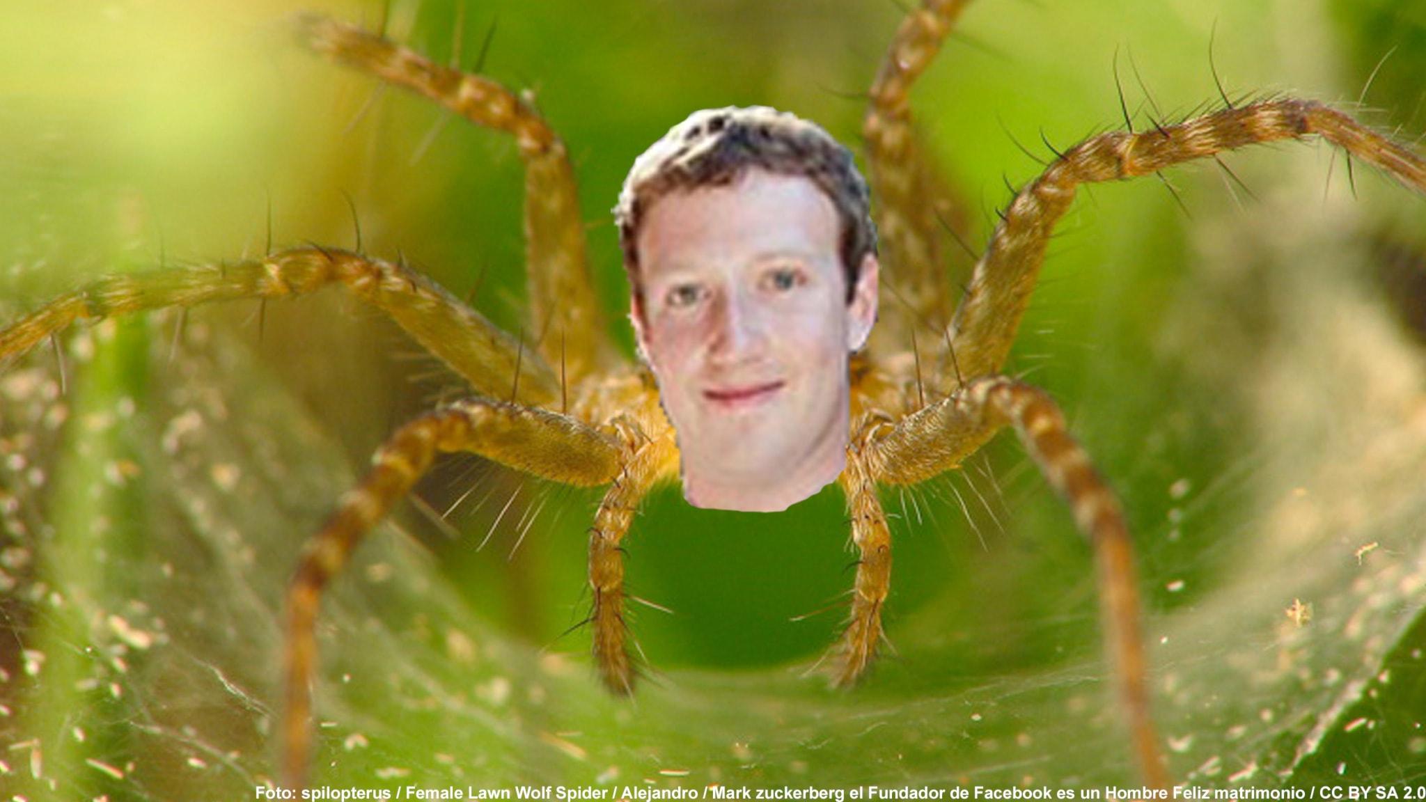 #17. Mark Zuckerberg - Spindeln som vill äga nätet