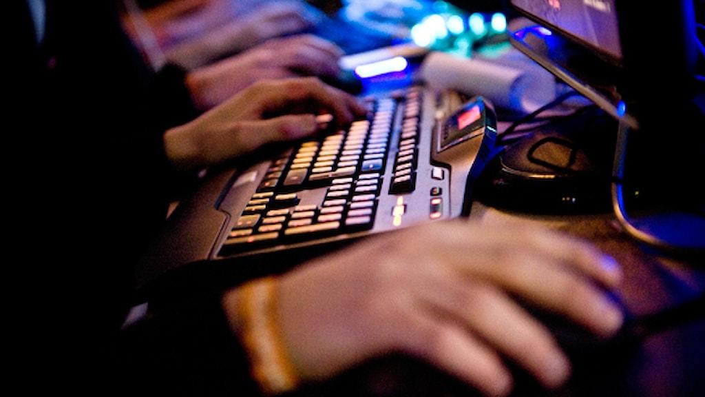 Spelare på dataspelsfestivalen Dreamhack. Foto: Patrik Lundin/TT