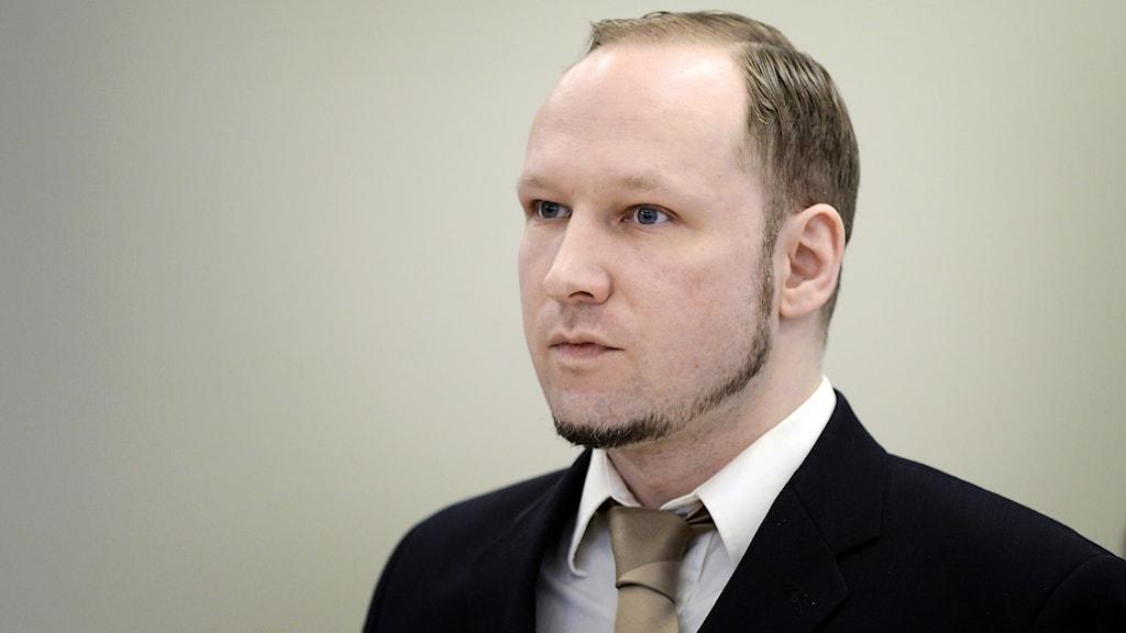 Massmördaren Anders Behring Breivik. Foto: AFP/TT