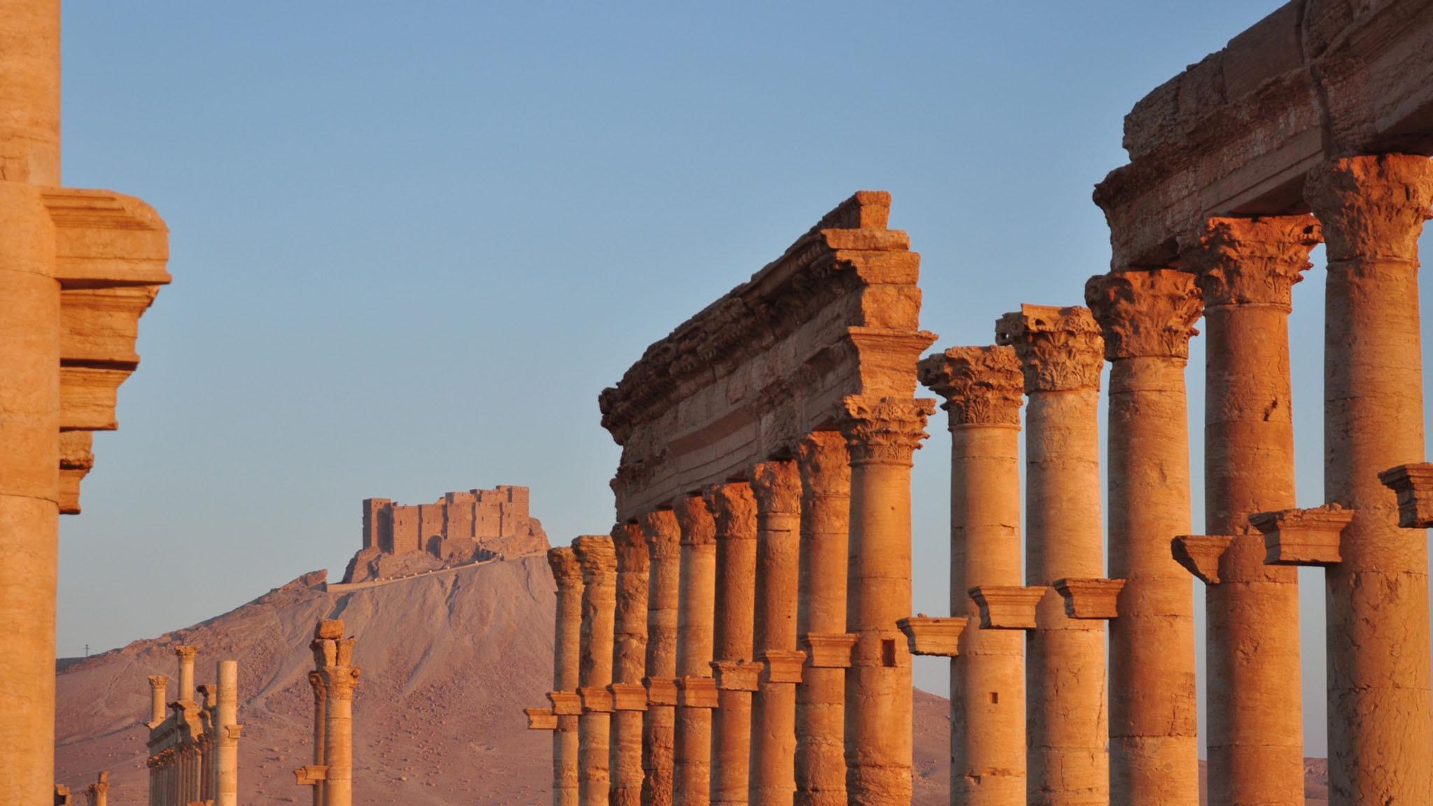 Drömmen om Palmyra