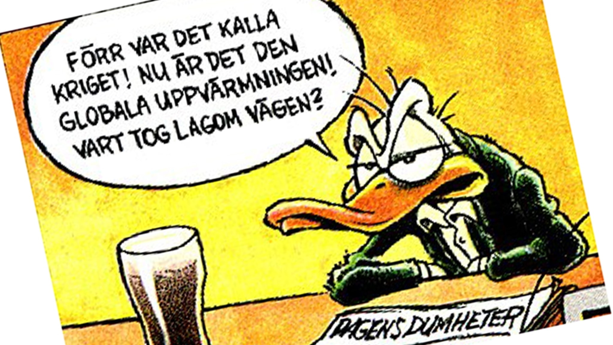 Arne Ankas politiska udd