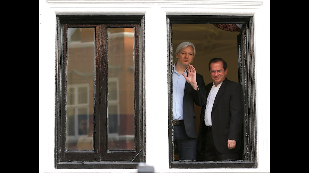 Julian Assange är lång och har vitt hår. Ricardo Pinto har mörkt hår och är betydligt kortare.