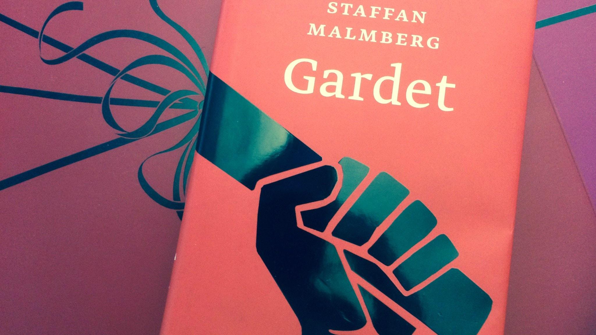 Romanprisjuryn diskuterar bok 1: Gardet av Staffan Malmberg