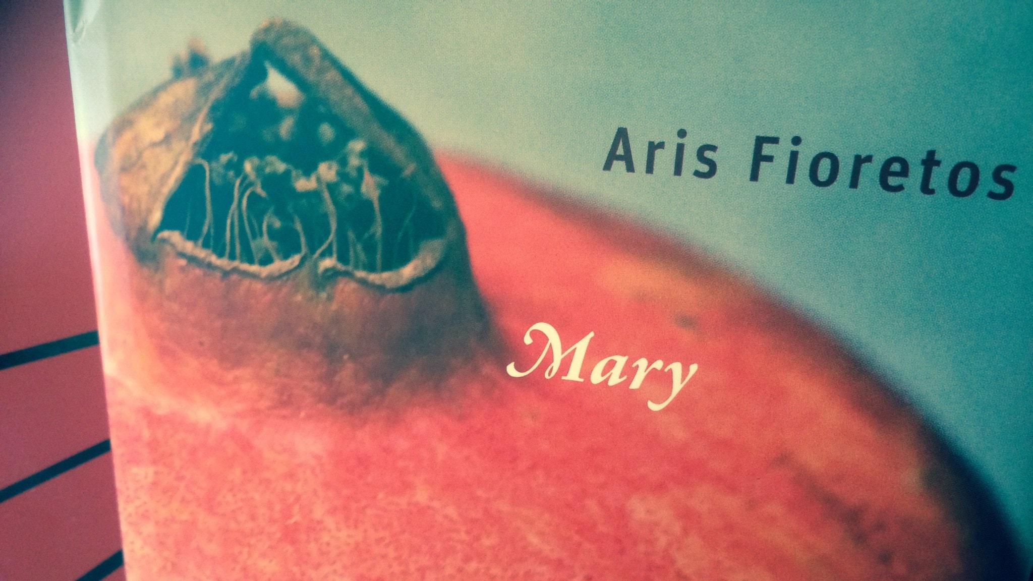 Romanprisjuryn diskuterar bok 2: Mary av Aris Fioretos