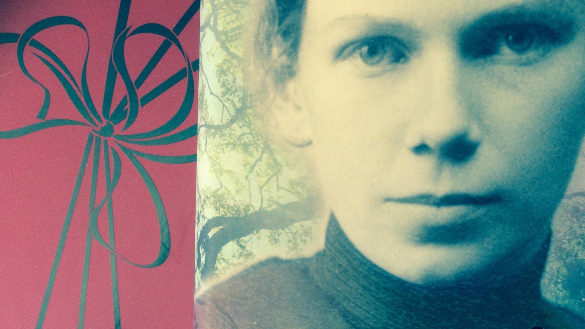 Romanprisjuryn diskuterar bok 3: Masja av Carola Hansson