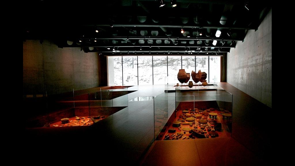Museerna och politiken