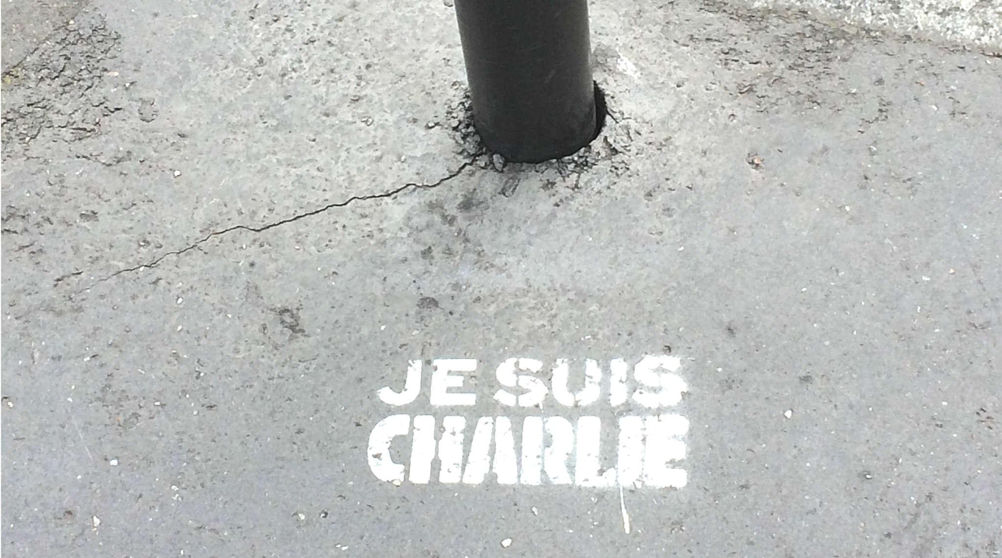 Efter Charlie Hebdo; Vad tänker du på?