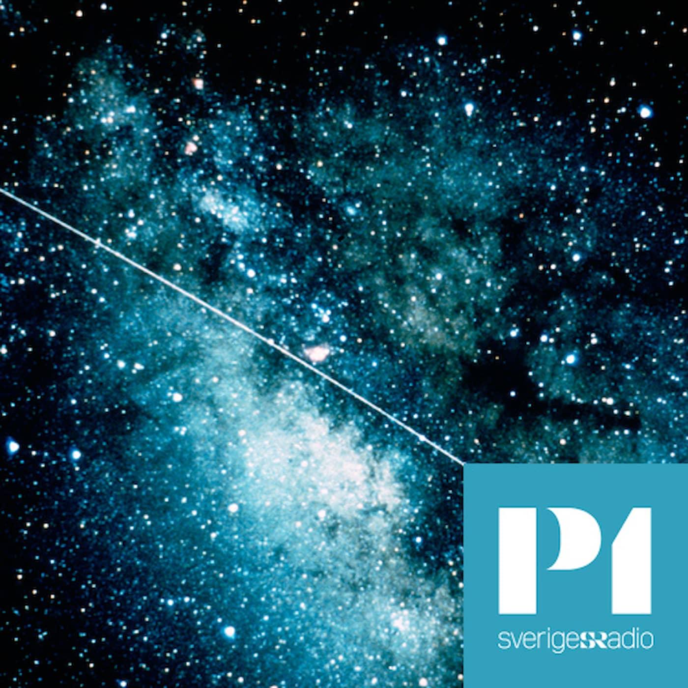 Filosofiska rummet i P1