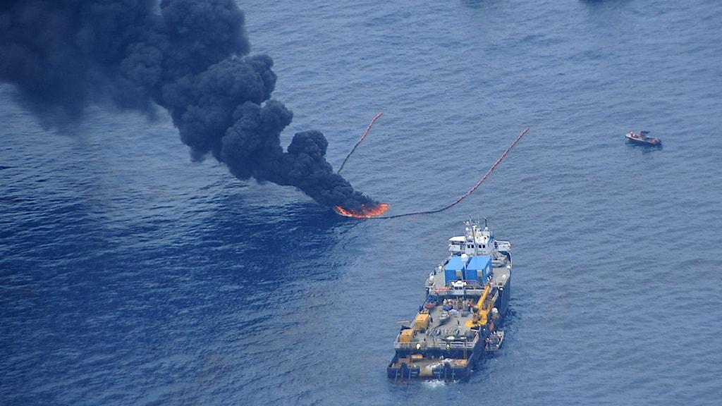 Amerikansk kustbevakning bränner olja i Mexikanska golfen för att minska omfattningen av olja i vattnet. Foto: USA:s kustbevakning/Scanpix.