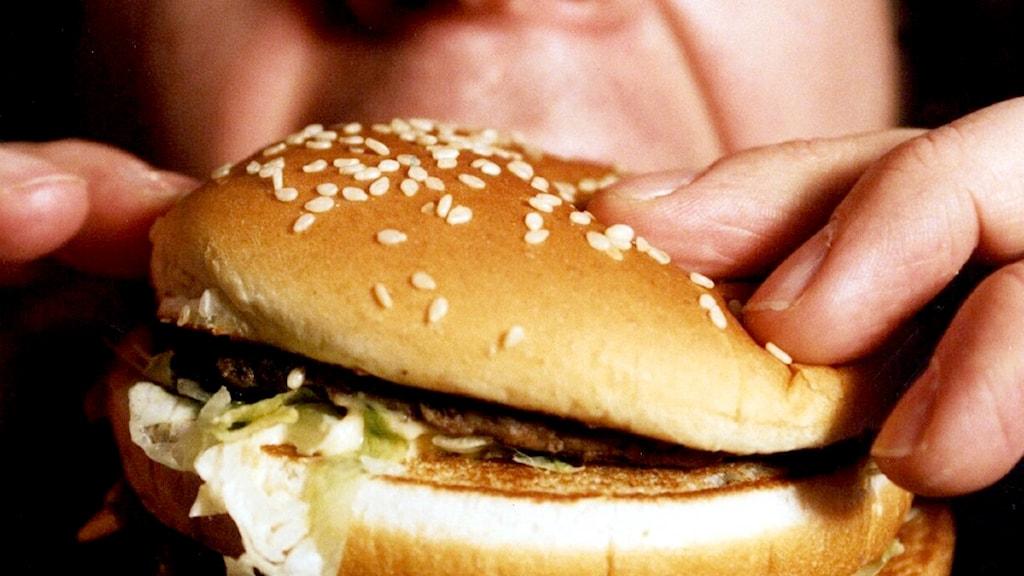 För att göra hamburgaren behövs några tusen av de små bitarna, tills nu har de odlat ett par hundra. Foto: Jurek Holzer/Scanpix