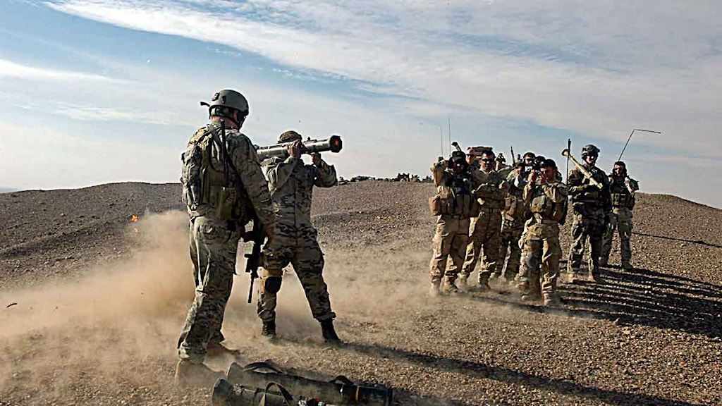 svenska militären vapen