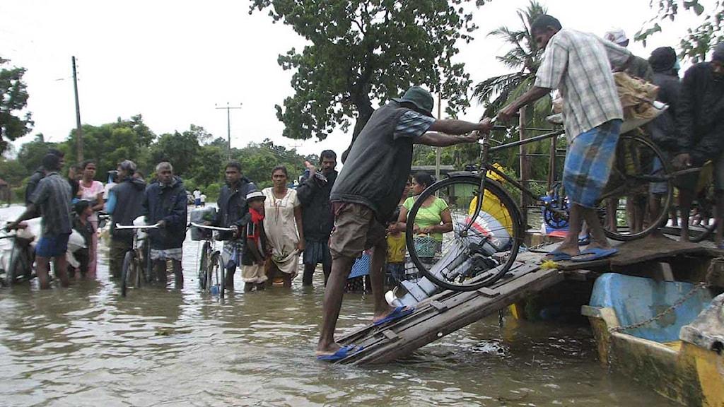 Människor lastar sina tillhörigheter på en båt i ett översvämmat område öster om Colombo. 10 januari 2011. Foto: Kailapillai Ruthiran/Scanpix.