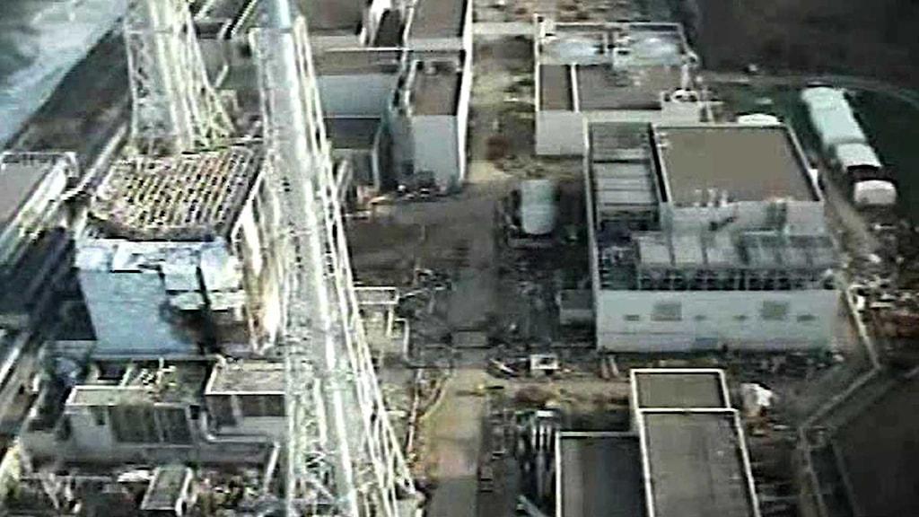 Det skalvdrabbade Fukushima-verket. Foto: Scanpix.