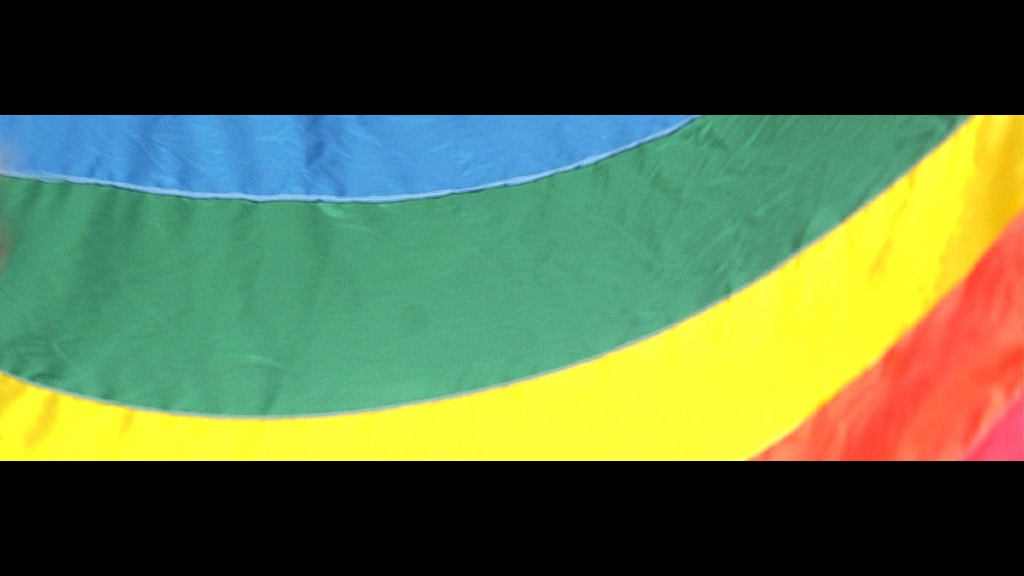 Prideflagga fiskpinne. Foto: Barbro Vivien/SCANPIX