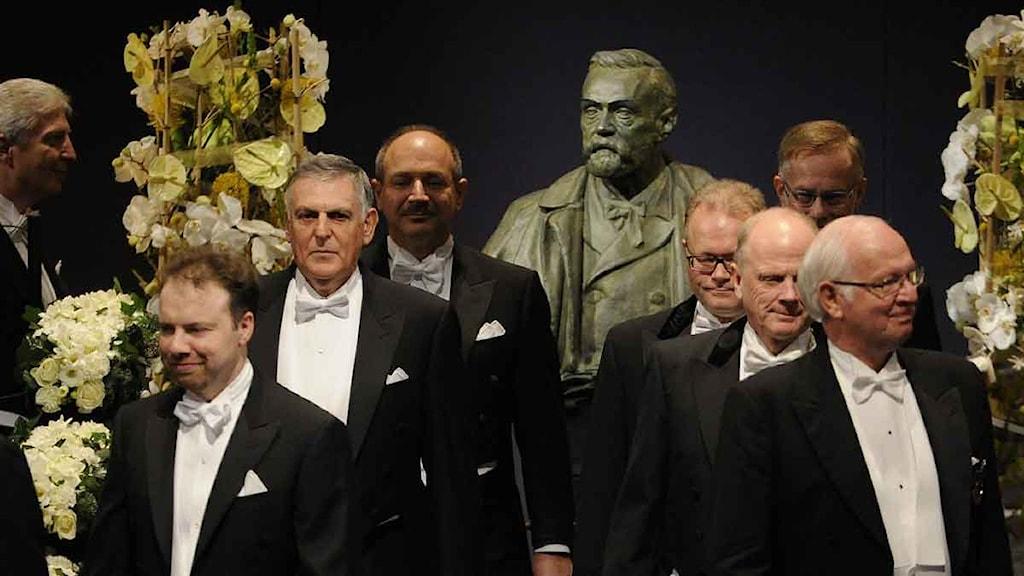 Nobelpristagarna tågar in till prisceremonin av 2011 års nobelpris i Konserthuset i Stockholm. Foto: Anders Wiklund/Scanpix.