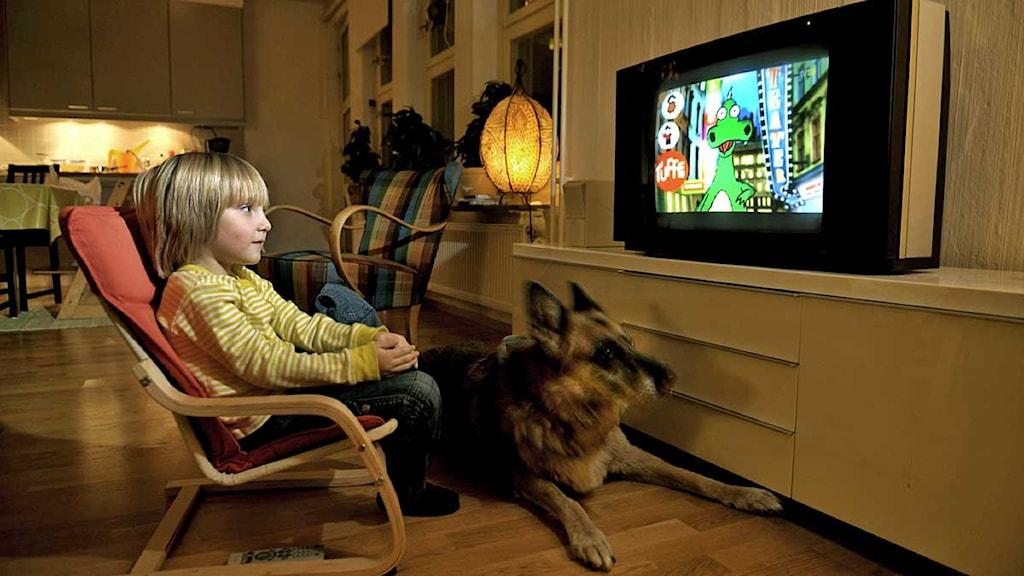 675 Preset Article Nyheter Svt Languagesv