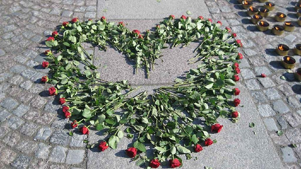 Manifestation mot hedersvåld på Medborgarplatsen i Stockholm. Ett hjärta av röda rosor. Foto: Daniel Velasco/Sveriges Radio.