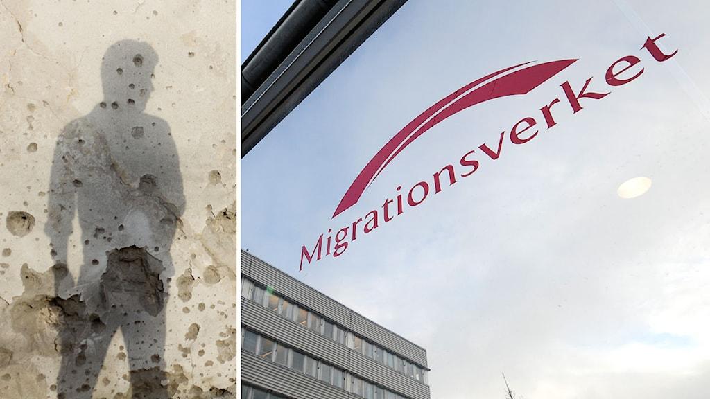 migrationsverket kontrollera beslut