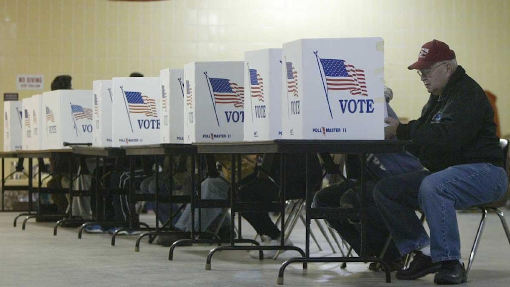 Röstande Michiganbor på rad. Foto: Ken StevensScanpix