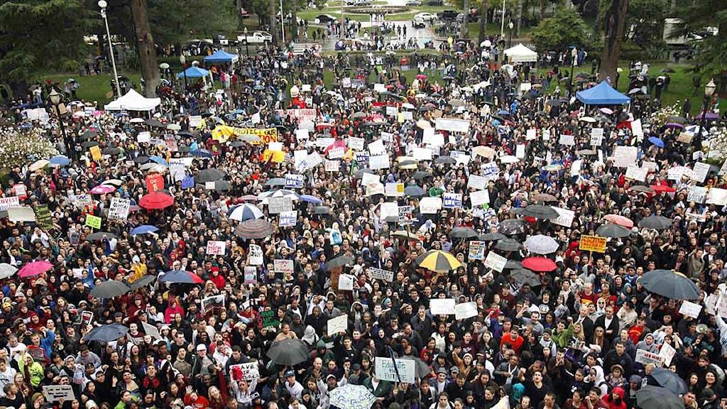 Lärare och elever protesterar mot nedskärningar inom skolan i Kalifornien i USA. Foto: Scanpix.