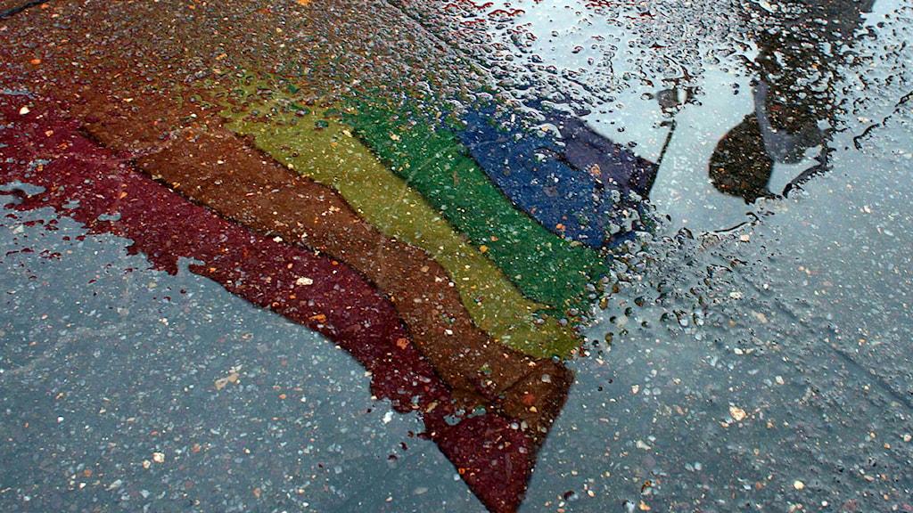 Regnbågsflaggan speglad i en vattenpöl.