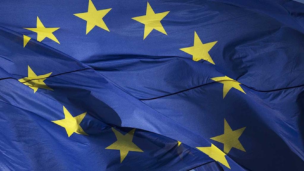 EU-flagga. Foto: Markus Schreiber/Scanpix