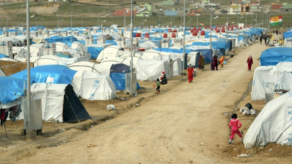 flyktingläger med tält, norra irak