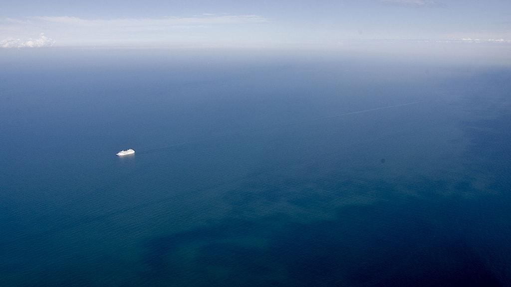 Algblomning Östersjön. Foto: TT