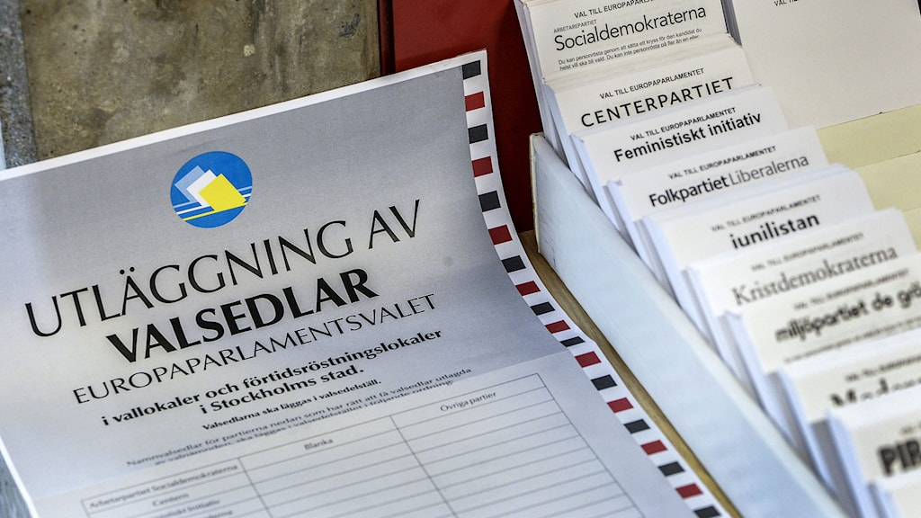 Sweden heads to the polls on Sunday to vote for a new European Parliament. Photo: Anders Wiklund/TT.