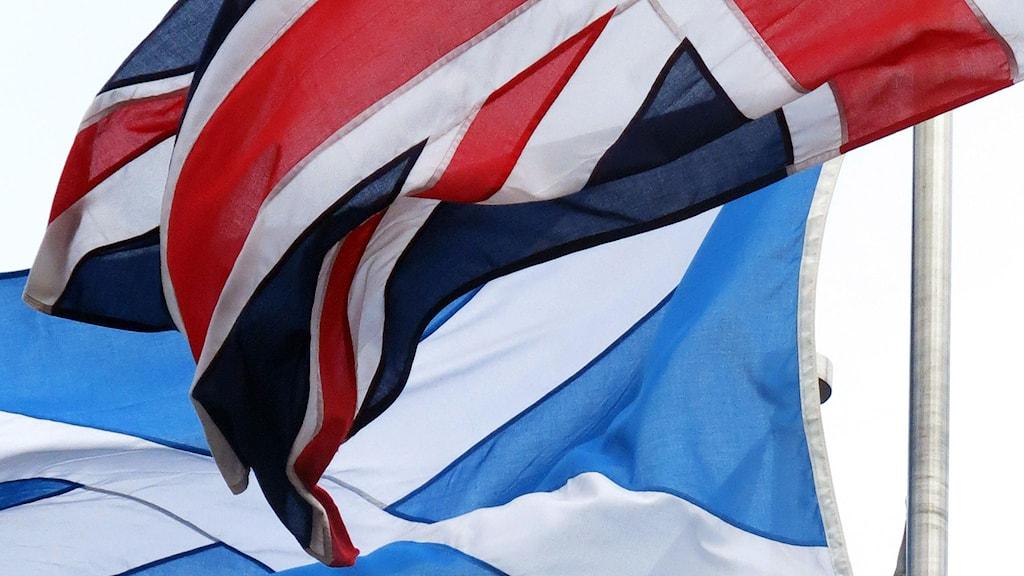 Storbritanniens flagga och Skottlands flagga. Foto: Jill Lawless/TT.