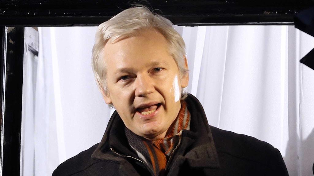 Julian Assange talar från Ecuadors ambassad i London. Foto: Kirsty Wigglesworth / TT