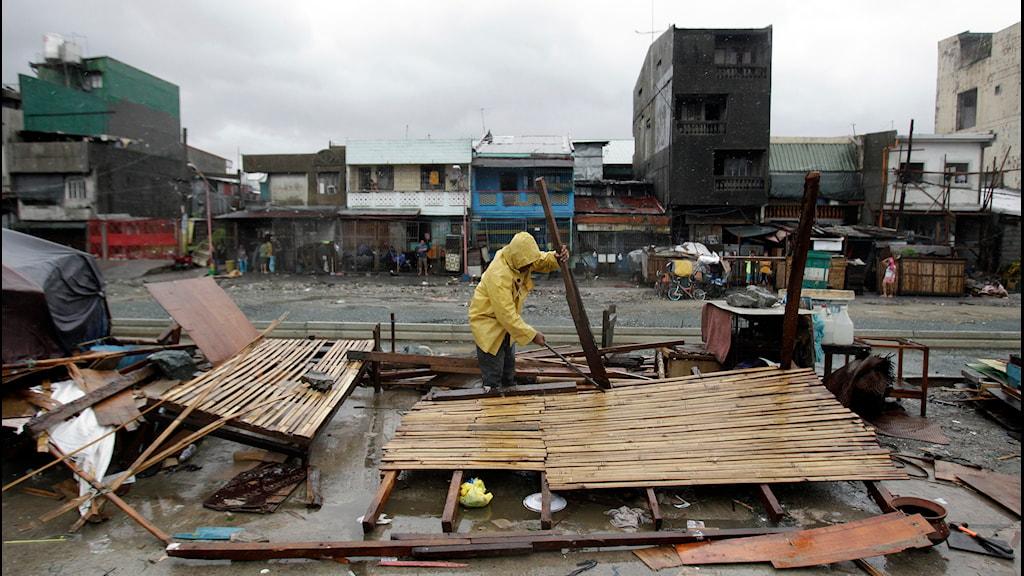 Tyfon Rammasun Manila