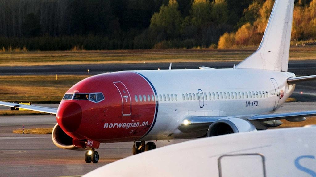 Norwegian flyg. Foto: Lars Pehrson/TT