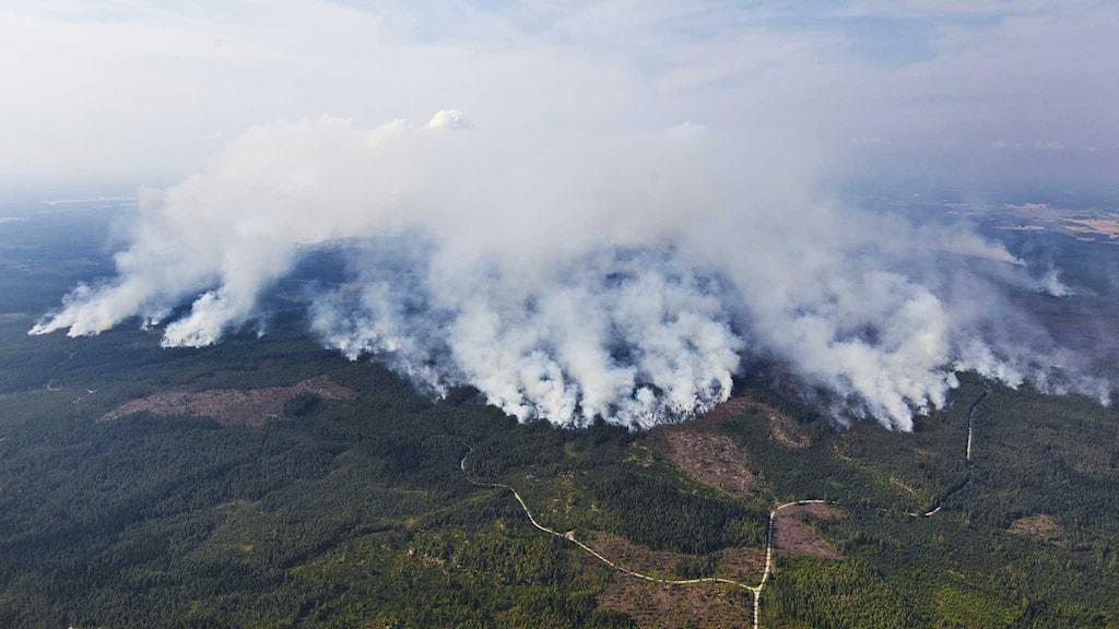 Skogsbranden i Västmanland. Foto: Jocke Berglund / TT