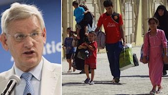 Carl Bldt och en familj på flykt i norra Irak.