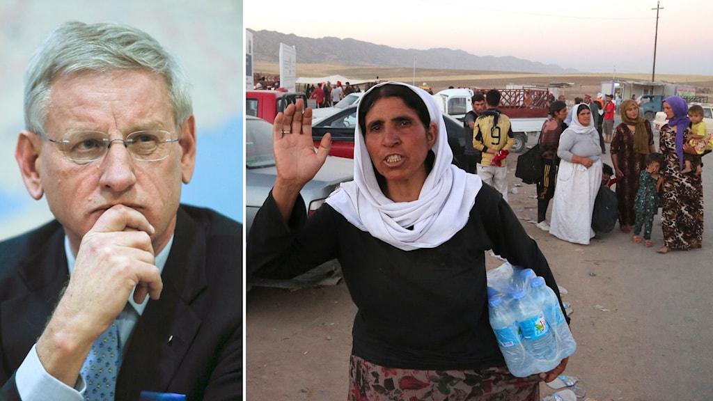 Carl Bildt (M) och nödställda i norra Irak.