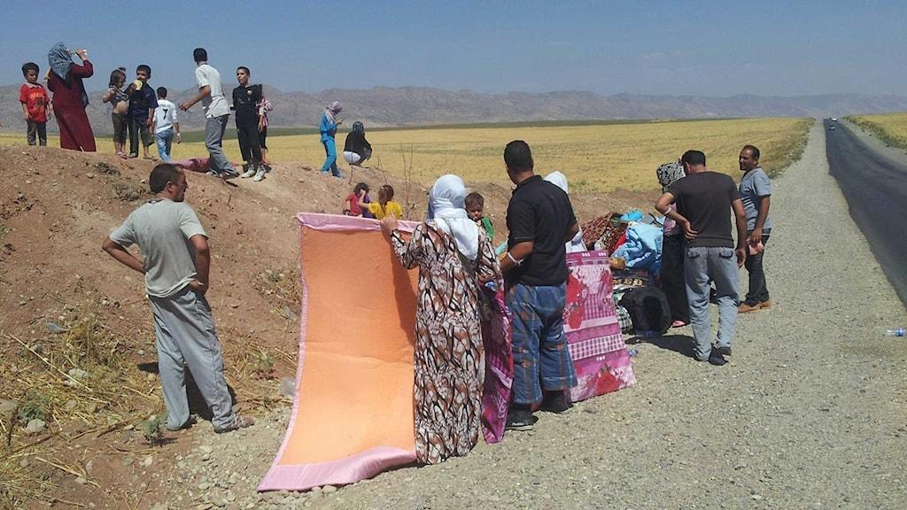 En yazidisk familj som tvingats fly från sitt hem i staden Sinjar. Familjen är inte den samma som omnämnd i inslaget.