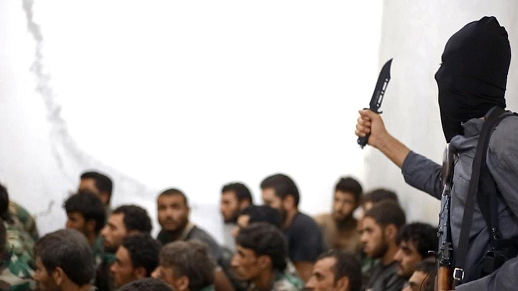 Syrien, strider, terror