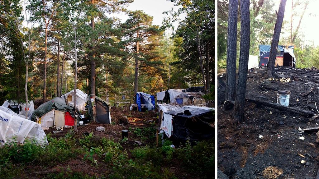 Tältlägret i Högdalen, i södra Stockholm. Foto: TT / Sveriges Radio