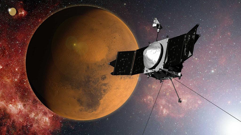 Nasas bild på rymdfarkosten Maven i omloppsbana kring Mars. Foto: Nasa/TT.