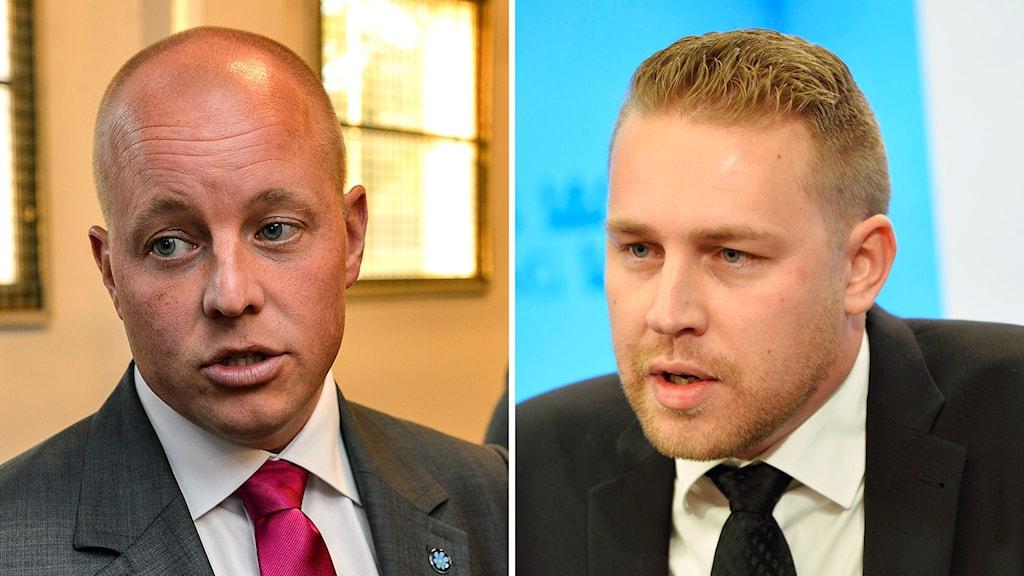 Björn Söder (t v), i dag SD:s gruppledare i riksdagen, kommer att bli andre vice talman. I stället kommer Mattias Karlsson (t h) att ta över posten som gruppledare, erfar Ekot. Foto: Anders Wiklund och Henrik Montgomery/TT