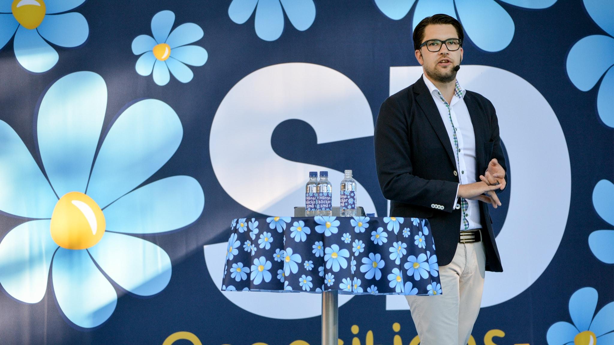 Jimmie Åkesson talar i Almedalen 2015