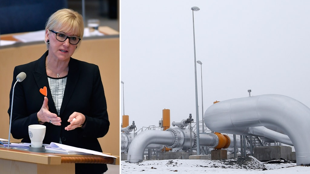 Sweden's foreign minister says there is no legal basis to block the pipeline. Photo: TT