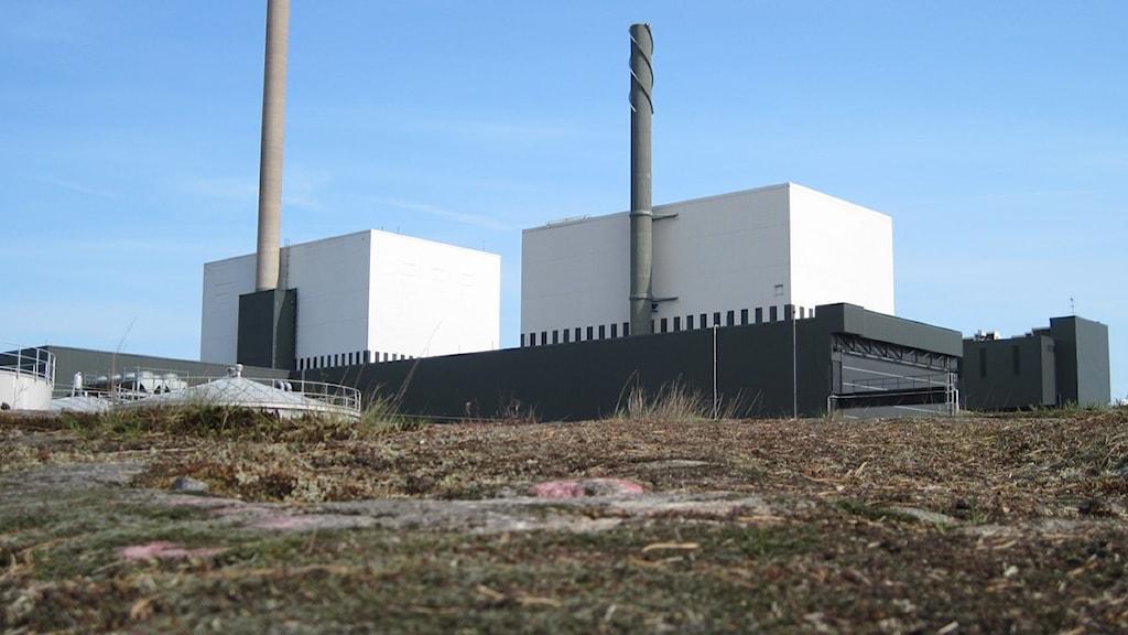 Reaktor 1 och 2 i Oskarshamn. Foto: Nick Näslund/Sveriges Radio.
